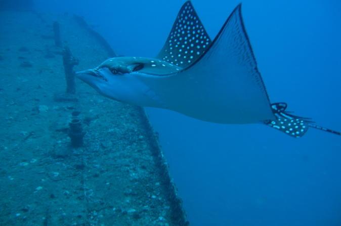 Two Tank Certified Wreck SCUBA Diving From Waikiki on Oahu