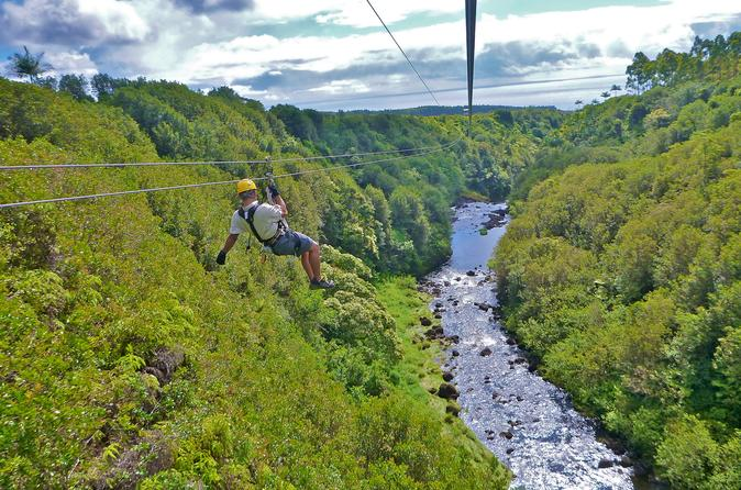 Zipline Through Paradise: Side By Side Dual Track Zipline Course on Hawaii