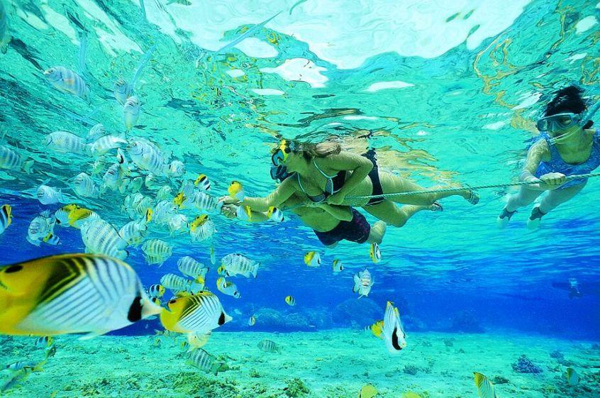 bring snorkel gear to hawaii
