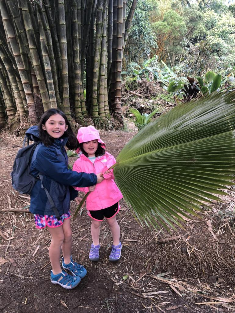 3 Day Maui Itinerary with Kids featured by top Hawaii travel blog, Hawaii Travel with Kids: The Road to Hana with kids can be a lot of fun, especially with stops like Twin Falls.