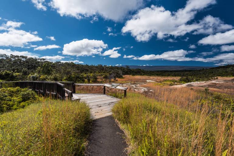 The Ultimate Guide to Hawaii Volcanoes National Park featured by top Hawaii blog, Hawaii Travel with Kids: Sulphur Banks Trail in Hawaii Volcanoes National Park in Hawaii, United States