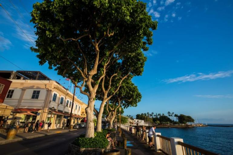 A Complete Travel Guide to Maui with Kids featured by top Hawaii travel blog, Hawaii Travel with Kids: Photo of Lahaina, Maui, a family travel destination in Hawaii #hawaii #lahaina #maui #familytravel