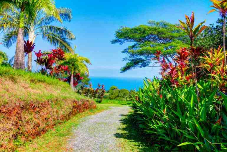 One of our favorite Road to Hana stops is the Garden of Eden. Image of a tropical garden on Maui.