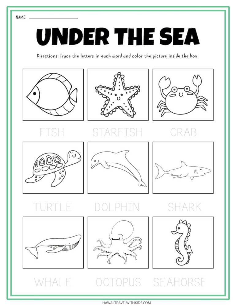 Under the sea tracing worksheet for kids. Image of an ocean worksheet for kids.