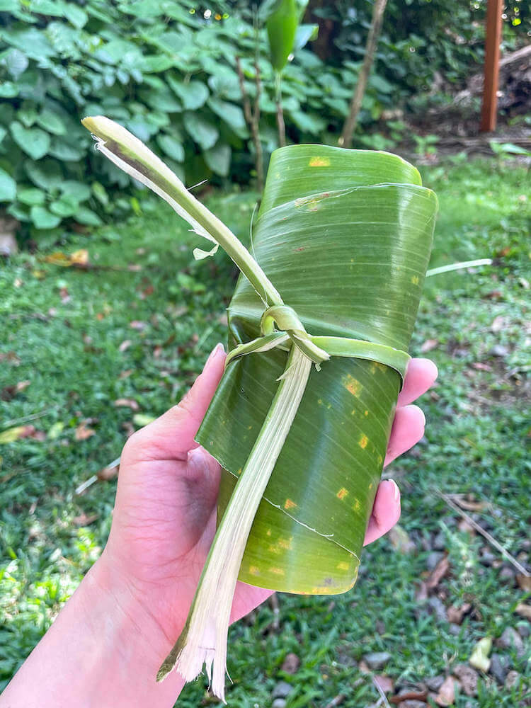 Part of the hands on activities at Experience Nutridge Luau on Oahu is roasting sweet potatoes. Image of a woman holding a sweet potato wrapped in a ti leaf.