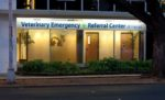Veterinary Emergency + Referral Center of Hawaii