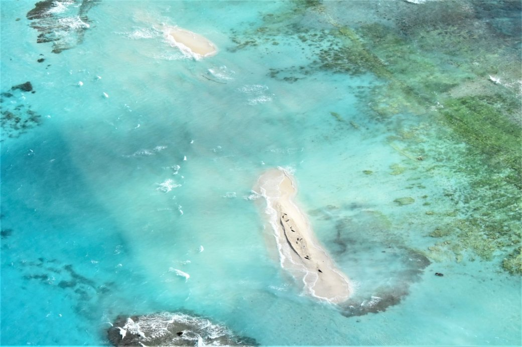 Picture of a disappearing atoll in the Northwestern Hawaiian Islands. 10 Monks seals crowd the tiny strip of sand following hurricane Walaka