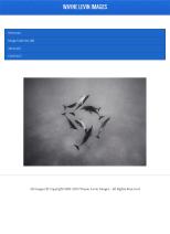 WayneLevinImagesiPad