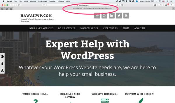 Meta Title tag- HawaiiWP.com Hawaii's Small Business WordPress Resource