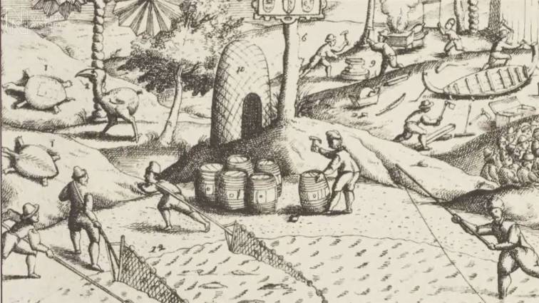 Illustration of Dutch colonists planting sugar cane on Mauritius, mid 17th century
