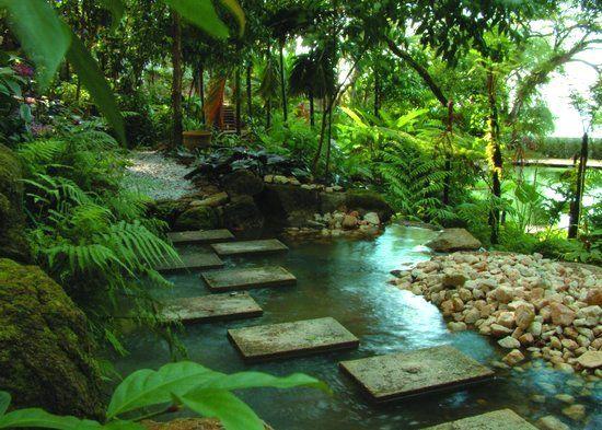 Jungle Garden Design Ideas Hawk Haven