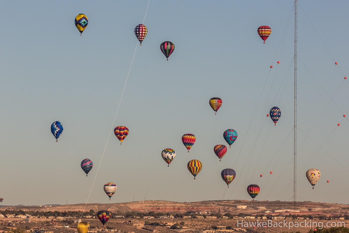 Balloon 2013 Fiesta Bees