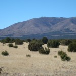 80 Acres Near Corona NM