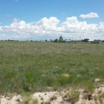 2 Acre Lot Country Living