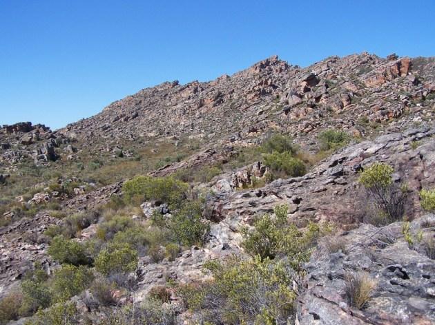 17b. Terrain south of Kunje.