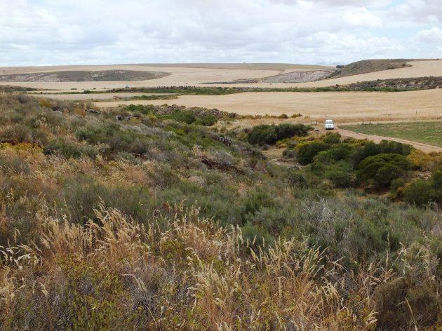 Fig. 130 - 7953 Klipbankskloof West 3 View westwards