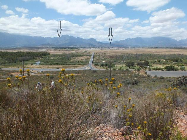 This is a picture taken from a very late flowering population of H. maculata near Die Nekkies resort south of Worcester. Looking north to where H. maculata grows at about 4000ft on the Audenberg peak, and to the right at about 1000ft in the lower Hex River pass. That is where it occurs close to H. aff nortieri.