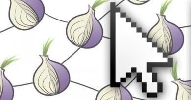 ZIB – The Open Tor Botnet