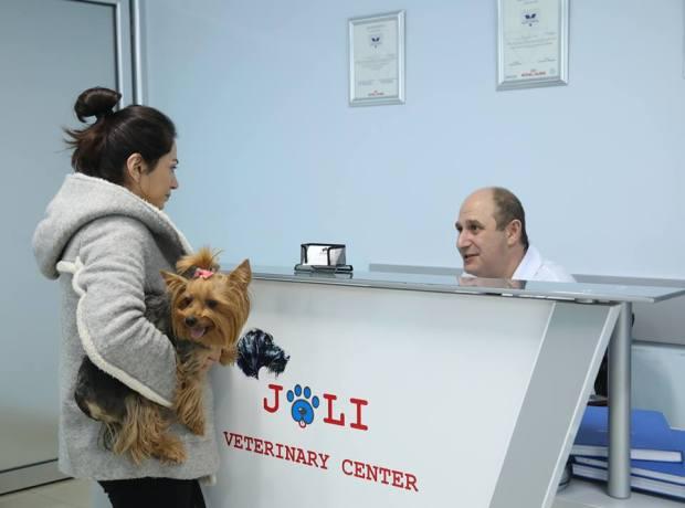 JOLI անասնաբուժական կլինիկայում հետազոտման է եկել հերթական այցելուն՝ այս փոքրիկ շնիկը: Առողջական վիճակը պարզելու համար շուտով փորձառու բժիշկը մանրամասնորեն կզննի նրան: