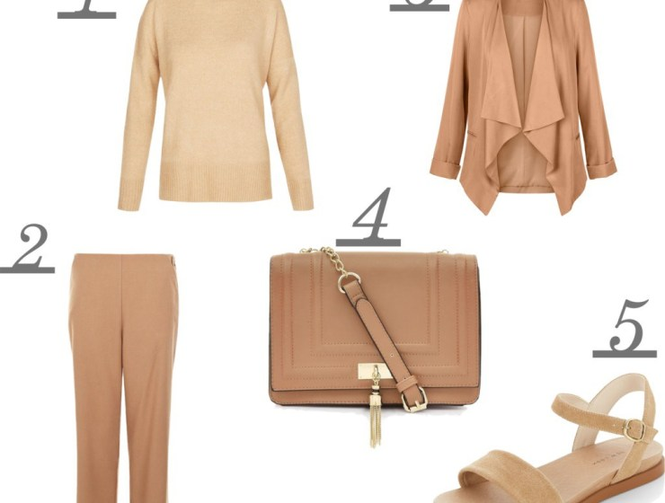 new look camel wishlist