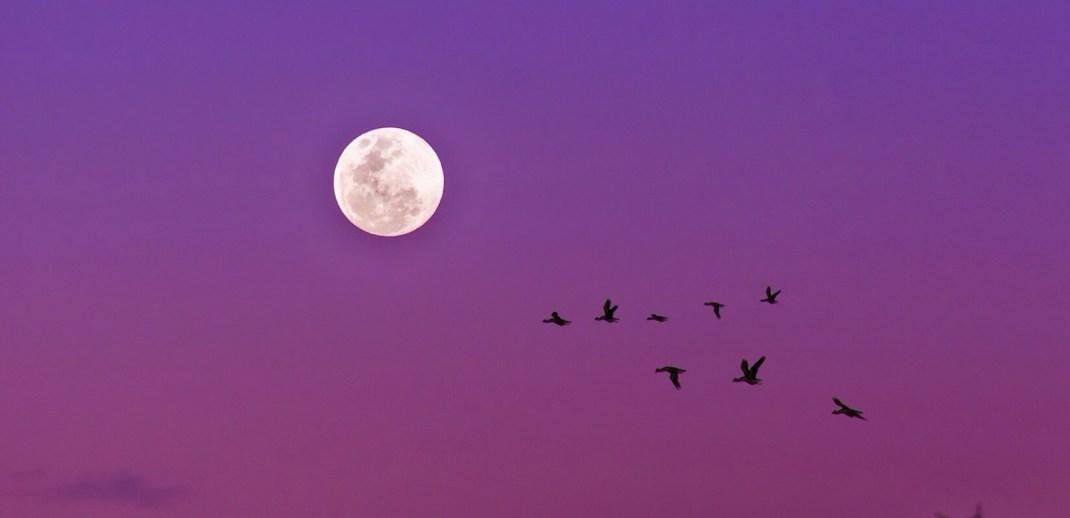 28 mart terazi dolunayı burçlara etkileri