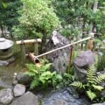 東洋人と西洋人の自然に対する考え方