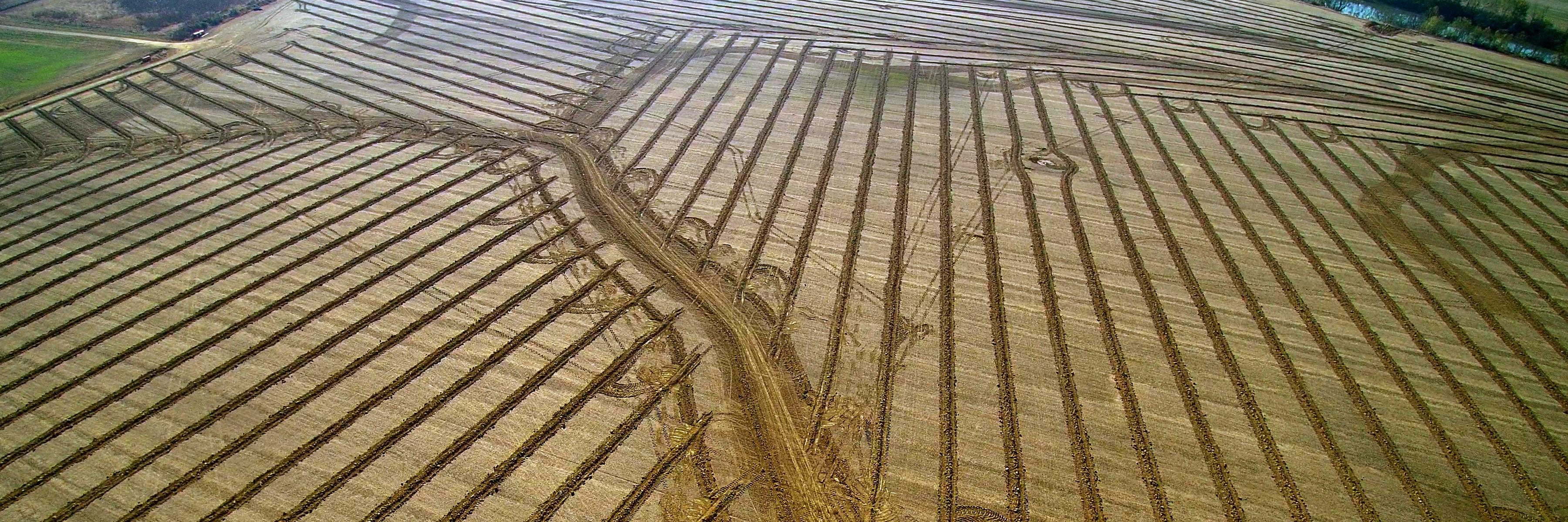 hayden tiling owensboro ky farm