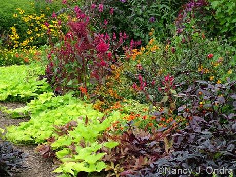 Front garden mid Sept 06