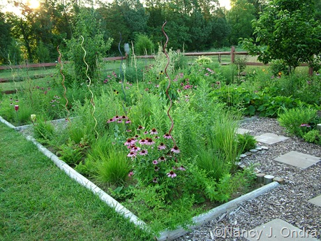 Perennial meadow in Cottage Garden at Hayefield July 13 11