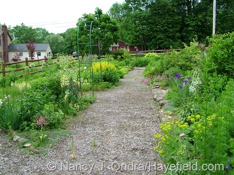 The Side Garden at Hayefield (June 2011)
