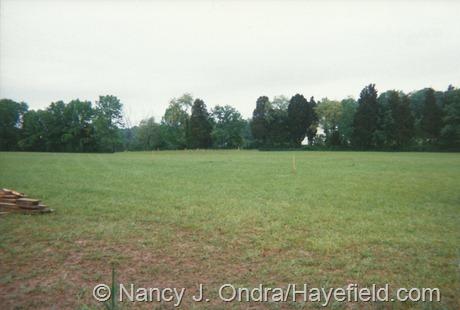 Hayefield Day 1 (May 21, 2001)