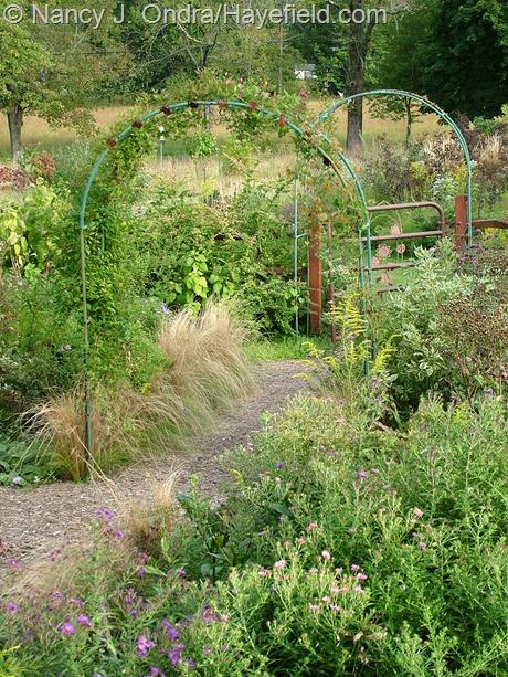 Side garden arches at Hayefield