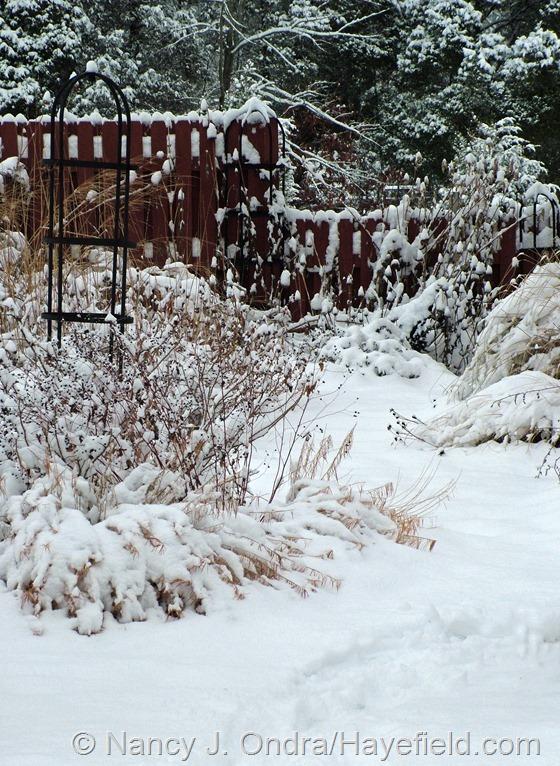 Courtyard: December 10, 2013 at Hayefield.com
