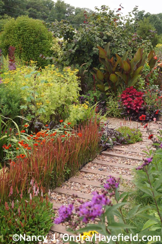Front Path at Hayefield.com