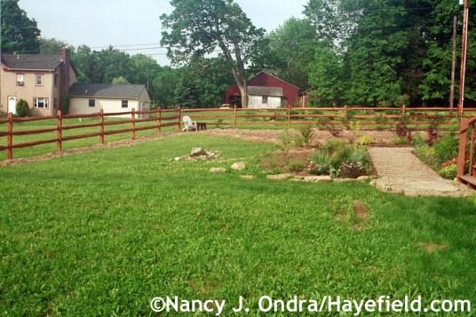 Side Garden June 2003 at Hayefield.com