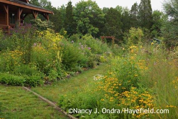 Side Garden at Hayefield (mid-August 2015); Nancy J. Ondra