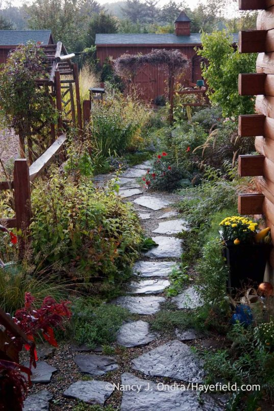 Courtyard fieldstone path; Nancy J. Ondra at Hayefield