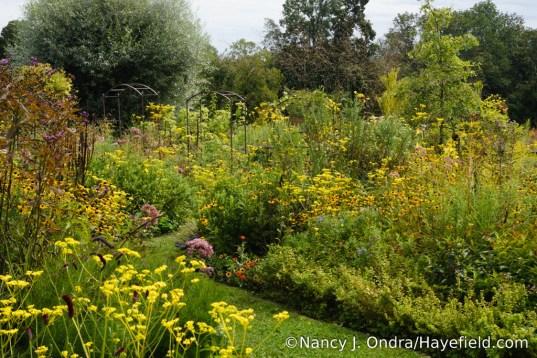 The side garden at Hayefield - September 2017 [Nancy J. Ondra/Hayefield.com]