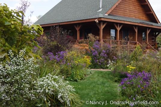 Front Garden Diagonal Path [Nancy J. Ondra/Hayefield.com]
