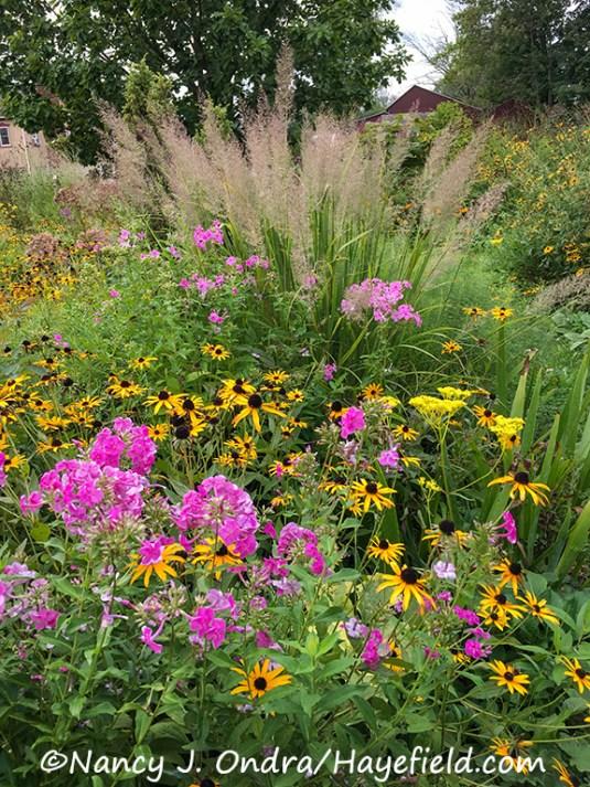 Hayefield Side Garden