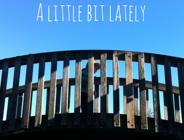 A Little Bit Lately 7