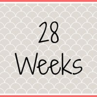 Twin Pregnancy Diary - 28 Weeks