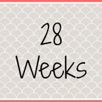 Twin Pregnancy Diary - 28 Weeks