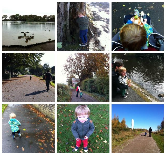 Autumn Days 2