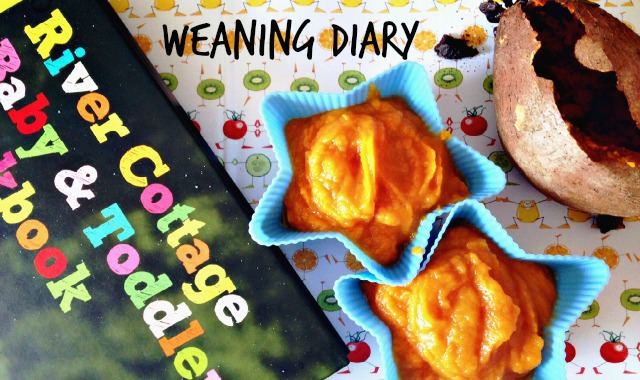 weaning diary