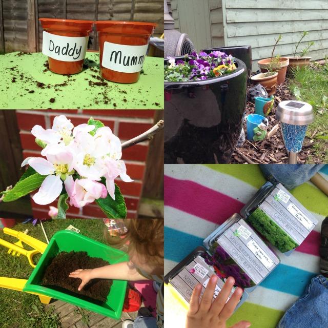 Home Bargains Garden 2