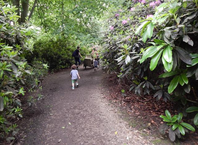 Tatton Gardens (15 of 23)