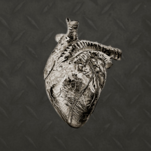 love, heart, digital manipulation, coming to life, fine art, composite, color, dark, photography, photograph, valentine, romantic, steel, guarded, protected, metal