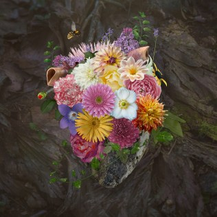 love, heart, digital manipulation, coming to life, fine art, composite, color, dark, photography, photograph, valentine, romantic, flower, floral, wooden, bee, garden, alive