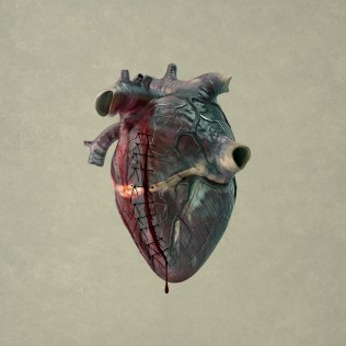 love, heart, digital manipulation, coming to life, fine art, composite, color, dark, photography, photograph, valentine, romantic, stitches, broken, wounded, fixed, healed, stitches, bleeding, bruised, blood